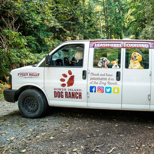 Karen driving the Dog Ranch city shuttle van on Bowen Island.