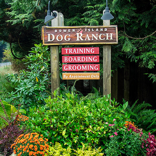 Welcome sign at the Bowen Island Dog Ranch.